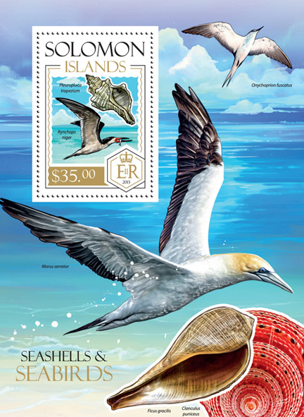 Shells and Seabirds - Issue of Solomon islands postage stamps