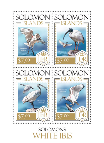 Bird - Issue of Solomon islands postage stamps