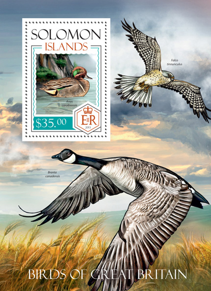 Birds - Issue of Solomon islands postage stamps