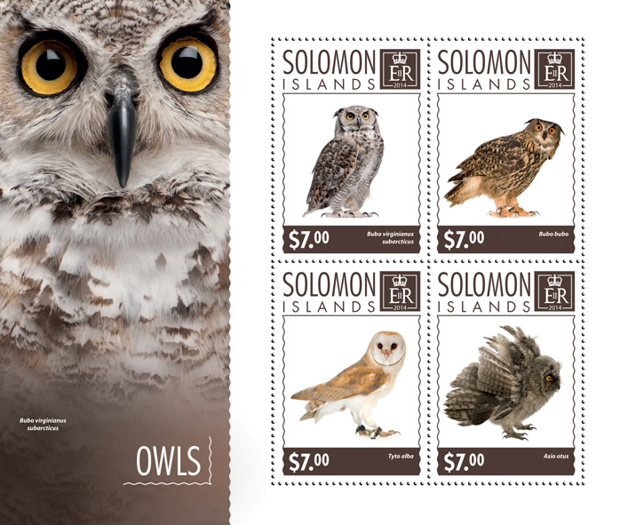 Owls - Issue of Solomon islands postage stamps
