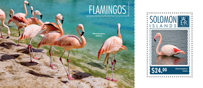 Flamingos - Issue of Solomon islands postage stamps