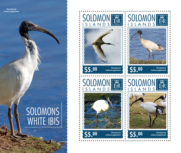 Solomons White Ibis - Issue of Solomon islands postage stamps