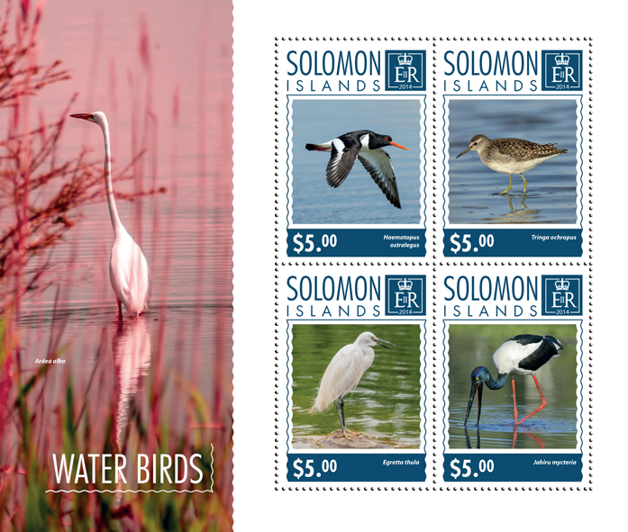 Water birds - Issue of Solomon islands postage stamps