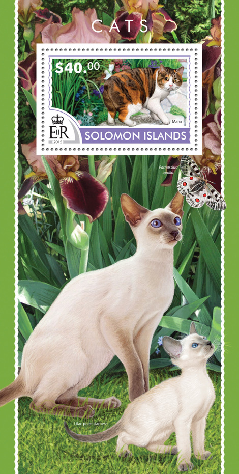 Cats - Issue of Solomon islands postage stamps