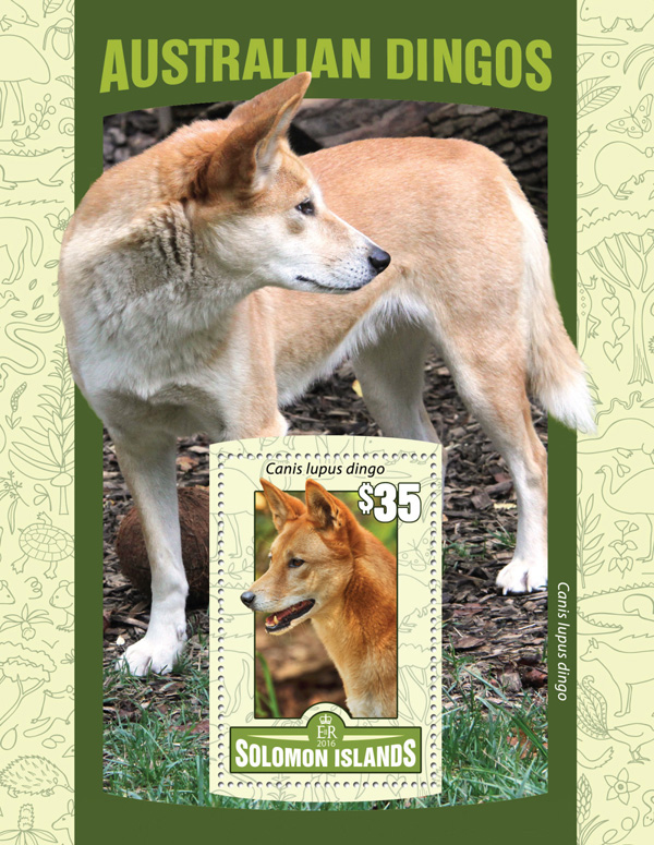 Australian Dingos - Issue of Solomon islands postage stamps