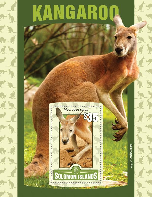 Kangaroo - Issue of Solomon islands postage stamps