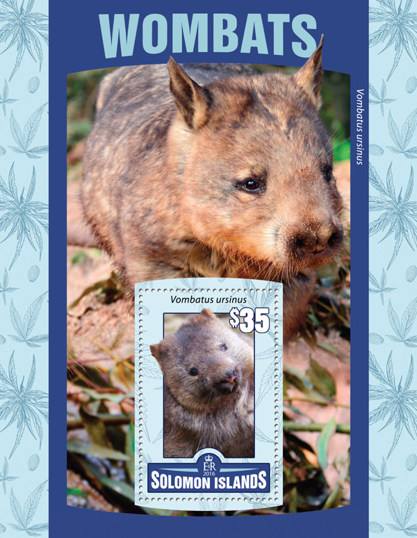 Wombats - Issue of Solomon islands postage stamps
