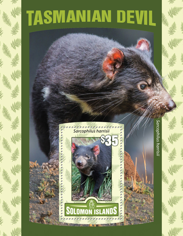 Tasmanian Devil - Issue of Solomon islands postage stamps